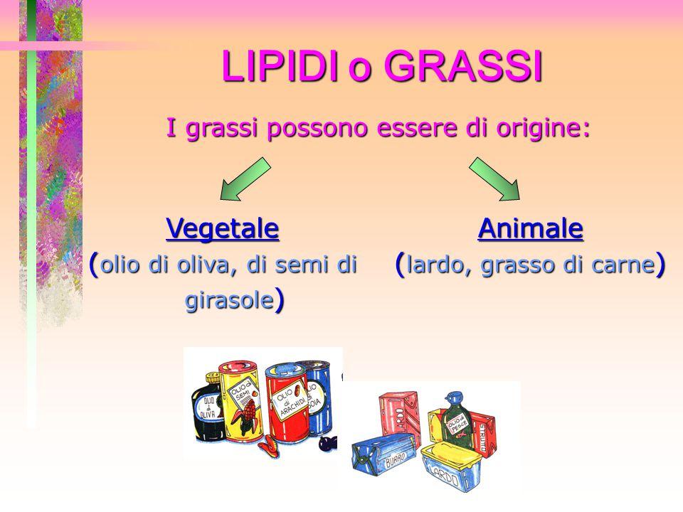 LIPIDI o GRASSI I grassi possono essere di origine: Vegetale ( olio di oliva, di semi di girasole ) Animale ( lardo, grasso di carne )