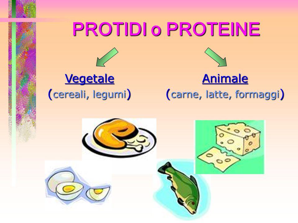 PROTIDI o PROTEINE Vegetale ( cereali, legumi ) Animale ( carne, latte, formaggi )