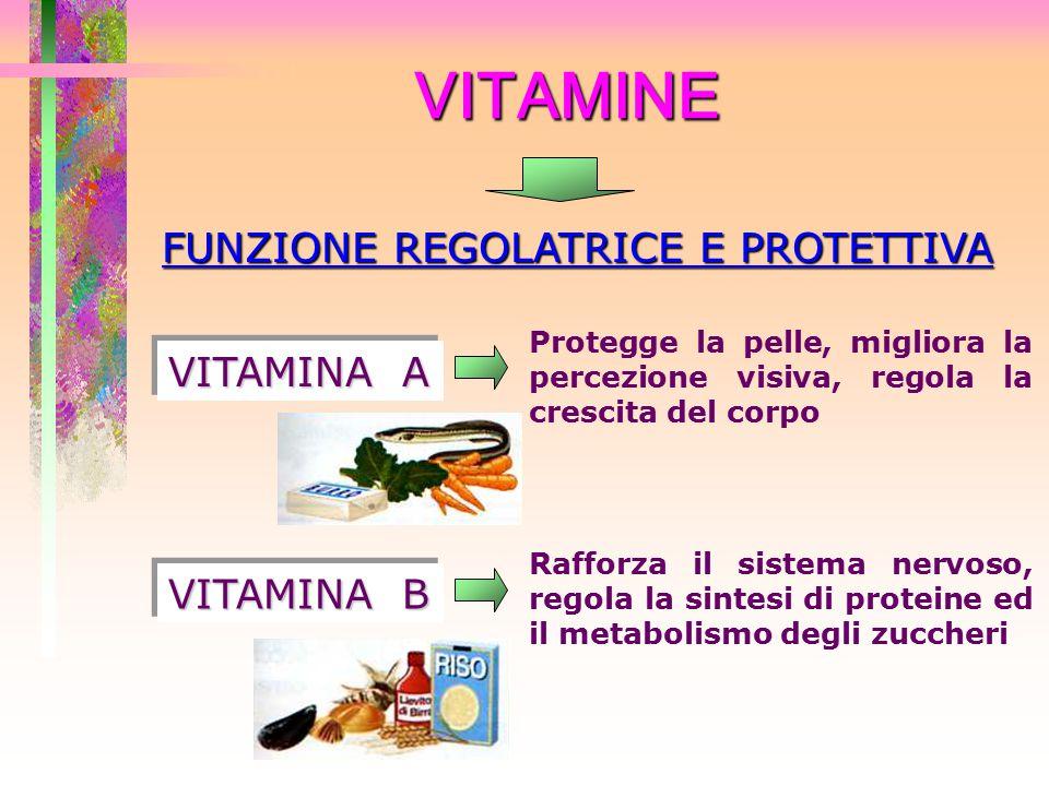 VITAMINE FUNZIONE REGOLATRICE E PROTETTIVA VITAMINA A Protegge la pelle, migliora la percezione visiva, regola la crescita del corpo VITAMINA B Raffor