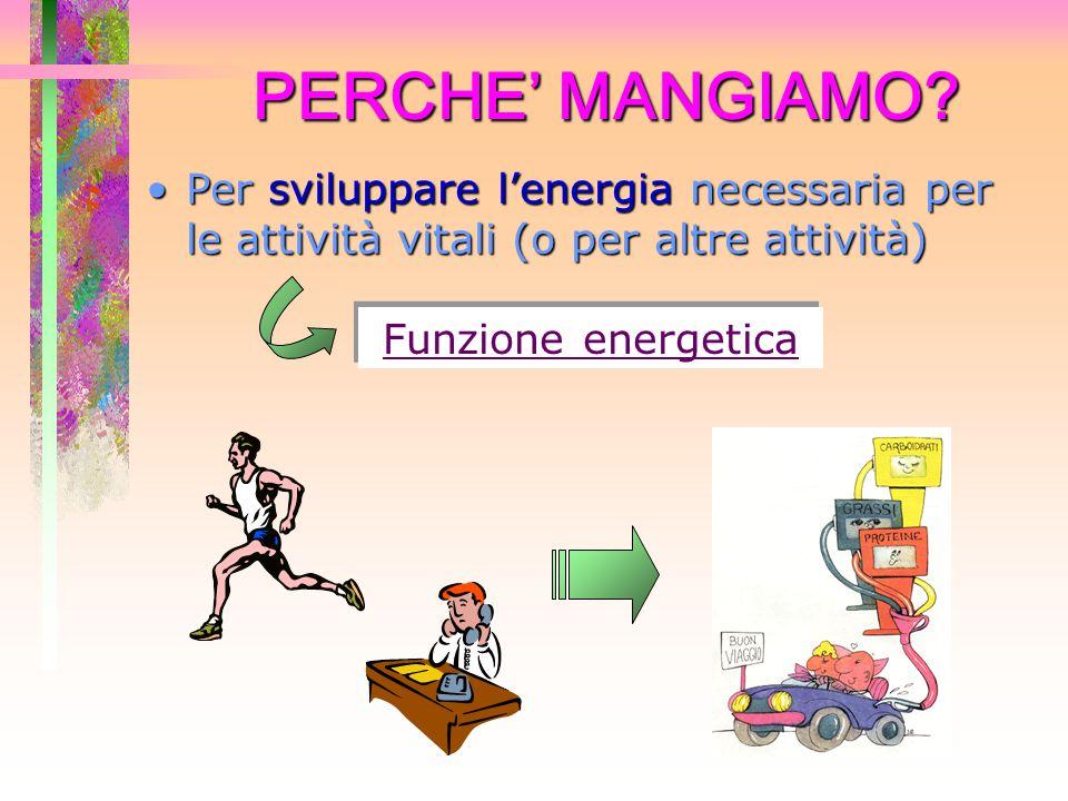 PERCHE' MANGIAMO? Per sviluppare l'energia necessaria per le attività vitali (o per altre attività)Per sviluppare l'energia necessaria per le attività