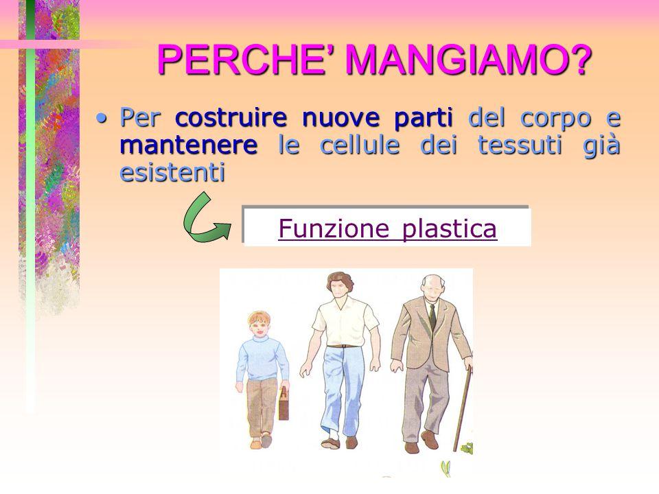 PERCHE' MANGIAMO.