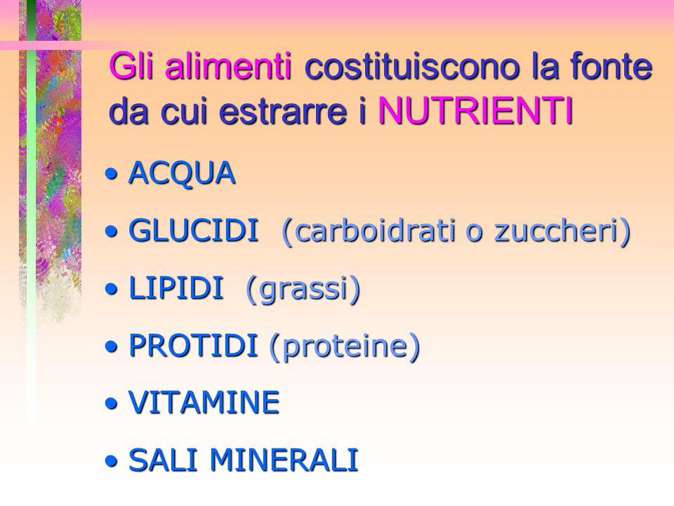 Gli alimenti costituiscono la fonte da cui estrarre i NUTRIENTI ACQUAACQUA GLUCIDI (carboidrati o zuccheri)GLUCIDI (carboidrati o zuccheri) LIPIDI (gr
