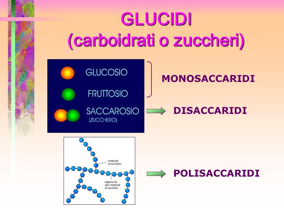 GLUCIDI (carboidrati o zuccheri) MONOSACCARIDI DISACCARIDI POLISACCARIDI