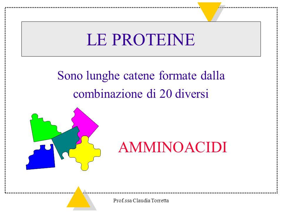 LE PROTEINE Sono lunghe catene formate dalla combinazione di 20 diversi AMMINOACIDI Prof.ssa Claudia Torretta