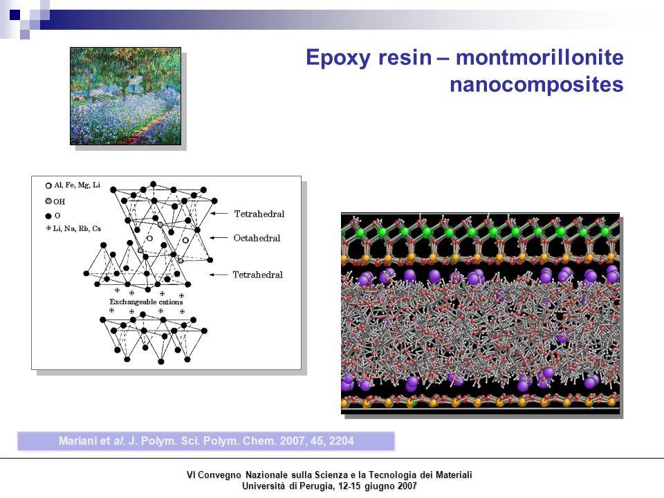 Epoxy resin – montmorillonite nanocomposites Mariani et al.