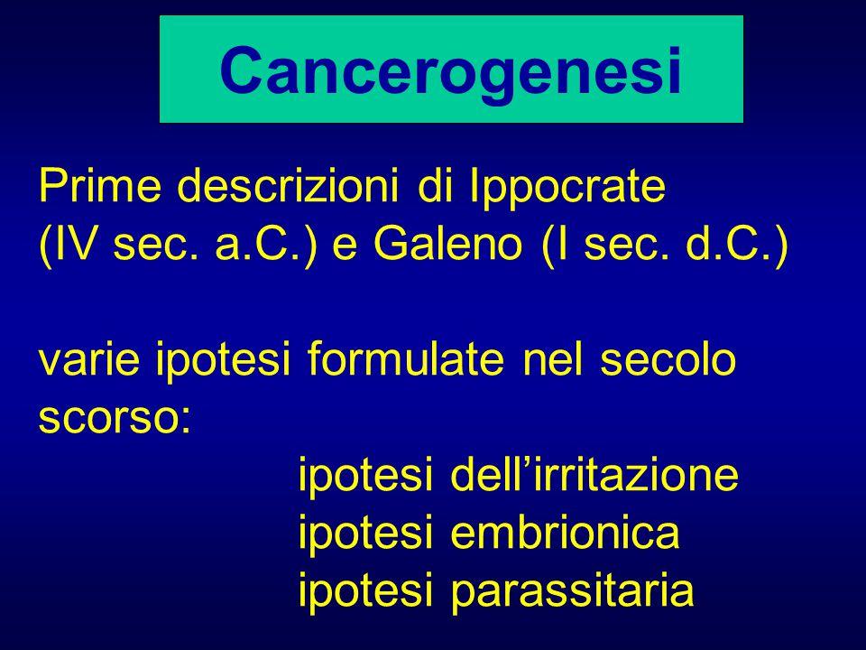 Cancerogenesi Prime descrizioni di Ippocrate (IV sec. a.C.) e Galeno (I sec. d.C.) varie ipotesi formulate nel secolo scorso: ipotesi dell'irritazione