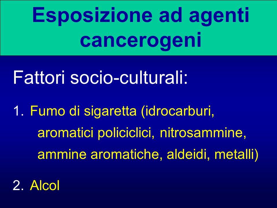 Fattori socio-culturali: 1.Fumo di sigaretta (idrocarburi, aromatici policiclici, nitrosammine, ammine aromatiche, aldeidi, metalli) 2.Alcol Esposizio