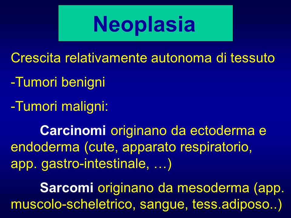 Neoplasia Crescita relativamente autonoma di tessuto -Tumori benigni -Tumori maligni: Carcinomi originano da ectoderma e endoderma (cute, apparato res