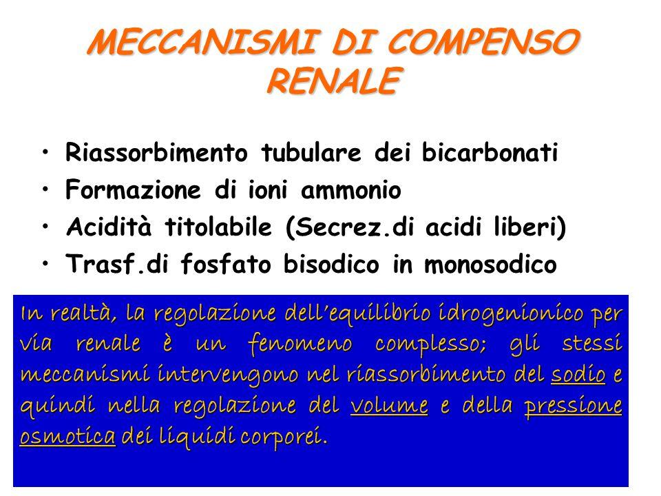 MECCANISMI DI COMPENSO RENALE Riassorbimento tubulare dei bicarbonati Formazione di ioni ammonio Acidità titolabile (Secrez.di acidi liberi) Trasf.di