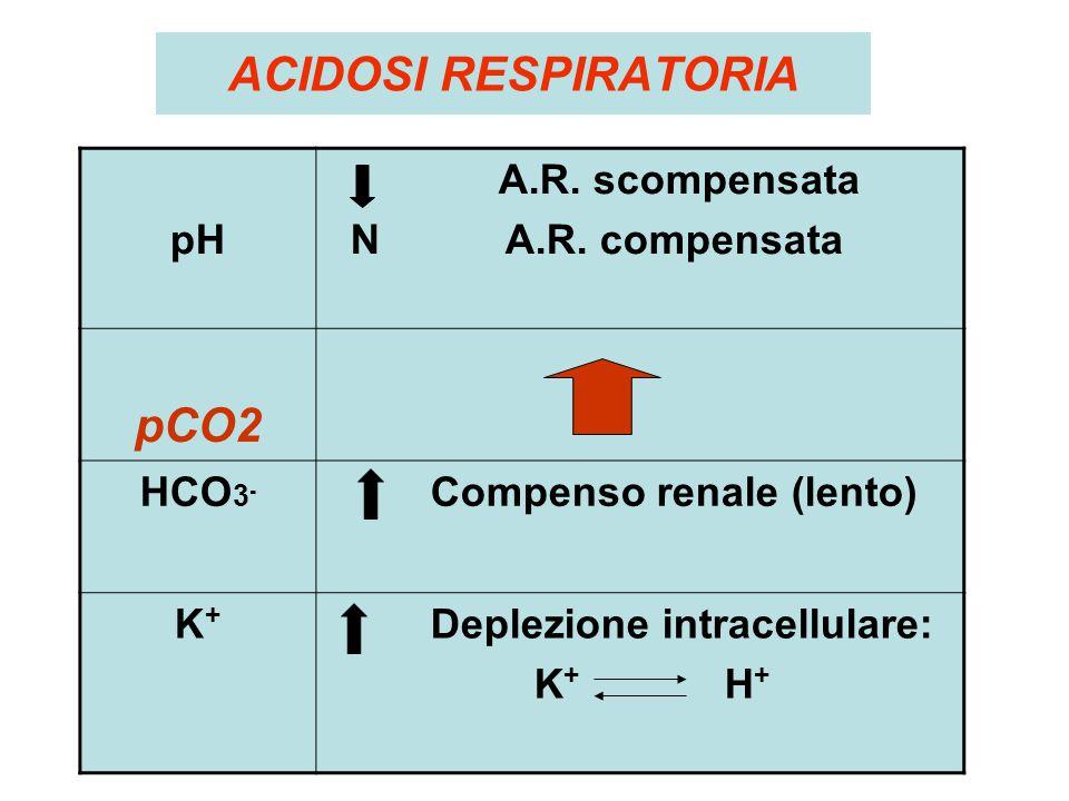 ACIDOSI RESPIRATORIA pH A.R. scompensata N A.R. compensata pCO2 HCO 3 - Compenso renale (lento) K+K+ Deplezione intracellulare: K + H +