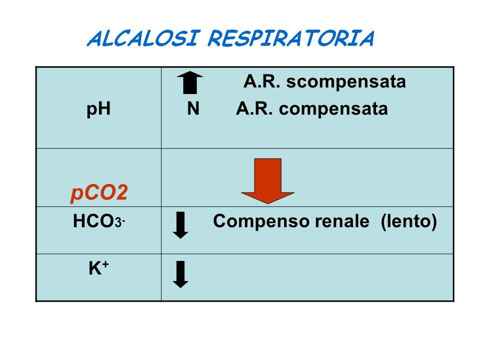 pH A.R. scompensata N A.R. compensata pCO2 HCO 3 - Compenso renale (lento) K+K+
