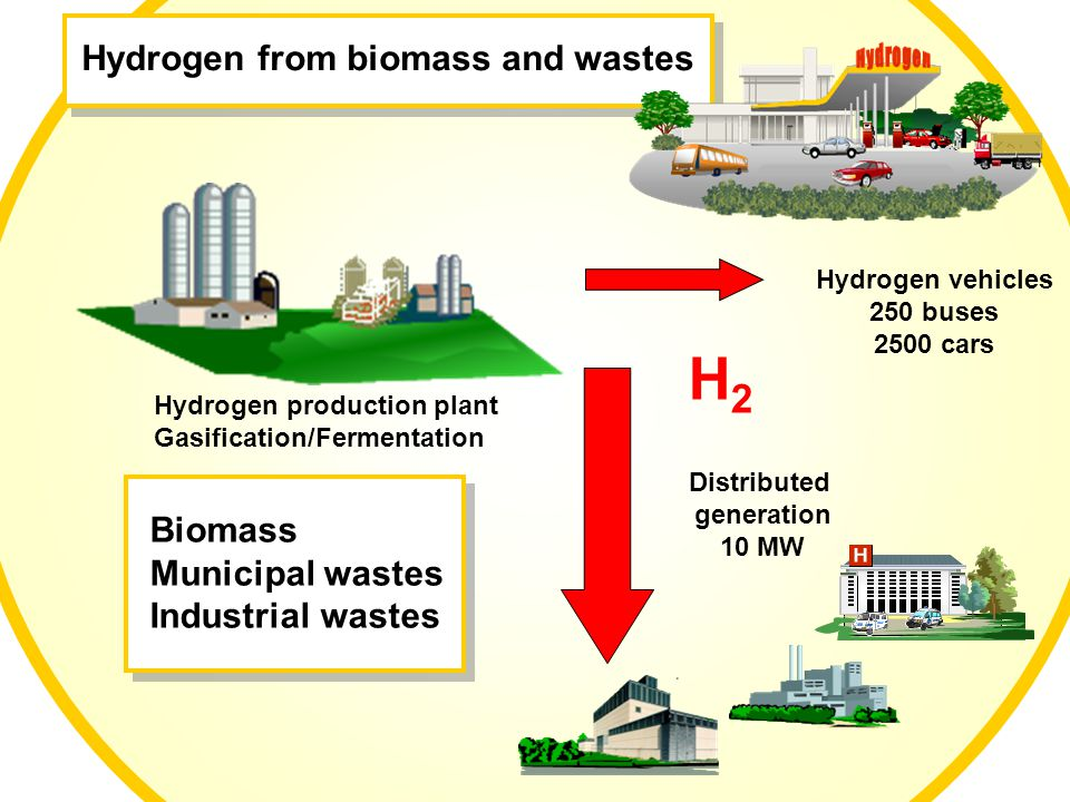 Distributed generation 10 MW Hydrogen vehicles 250 buses 2500 cars Hydrogen from biomass and wastes Hydrogen production plant Gasification/Fermentation H2H2 H2H2 Biomass Municipal wastes Industrial wastes