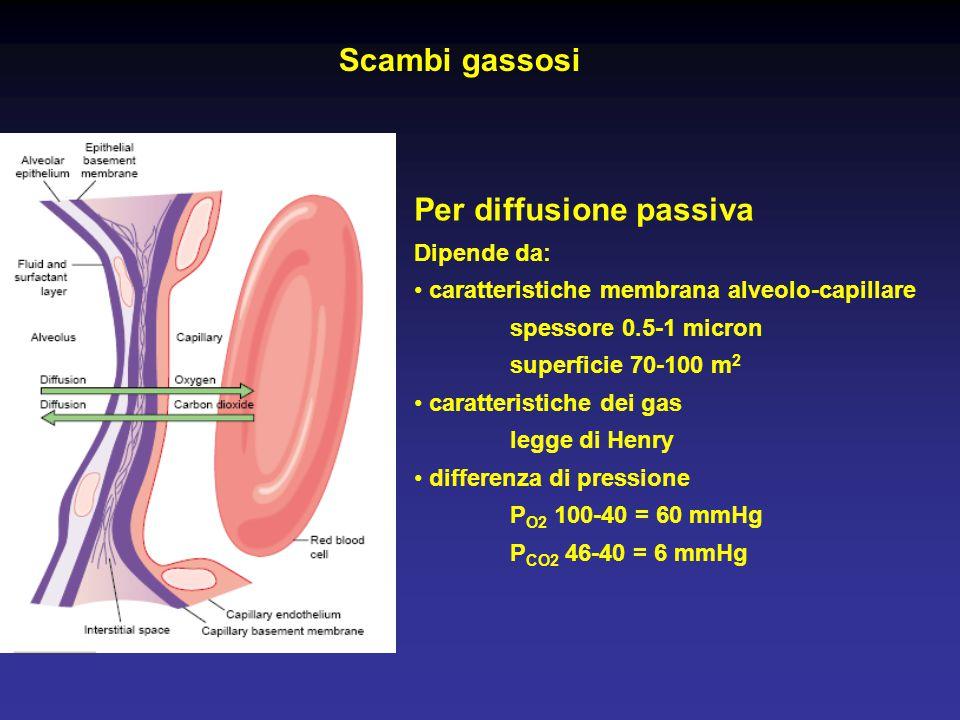Per diffusione passiva Dipende da: caratteristiche membrana alveolo-capillare spessore 0.5-1 micron superficie 70-100 m 2 caratteristiche dei gas legg