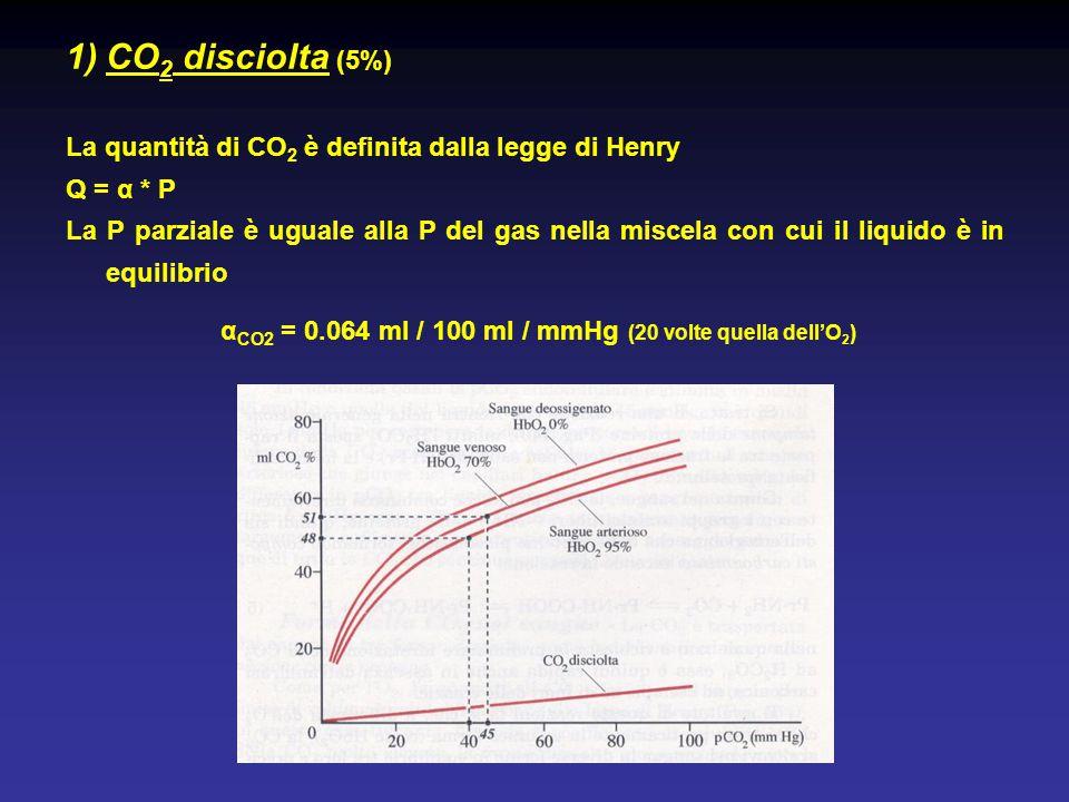 1)CO 2 disciolta (5%) La quantità di CO 2 è definita dalla legge di Henry Q = α * P La P parziale è uguale alla P del gas nella miscela con cui il liq
