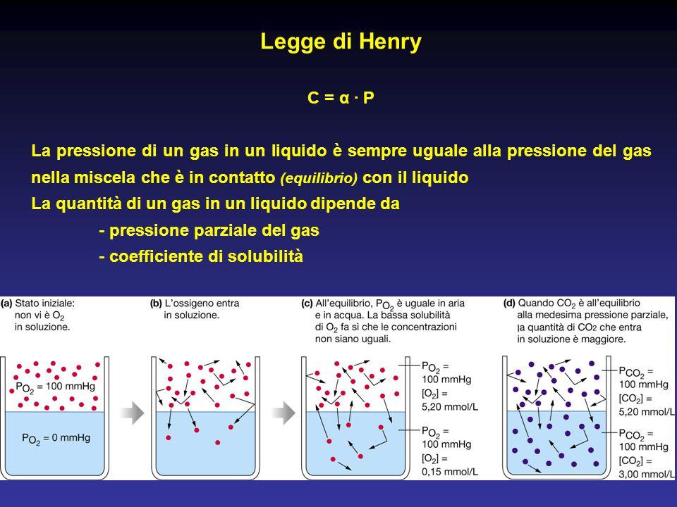 Legge di Henry C = α · P La pressione di un gas in un liquido è sempre uguale alla pressione del gas nella miscela che è in contatto (equilibrio) con