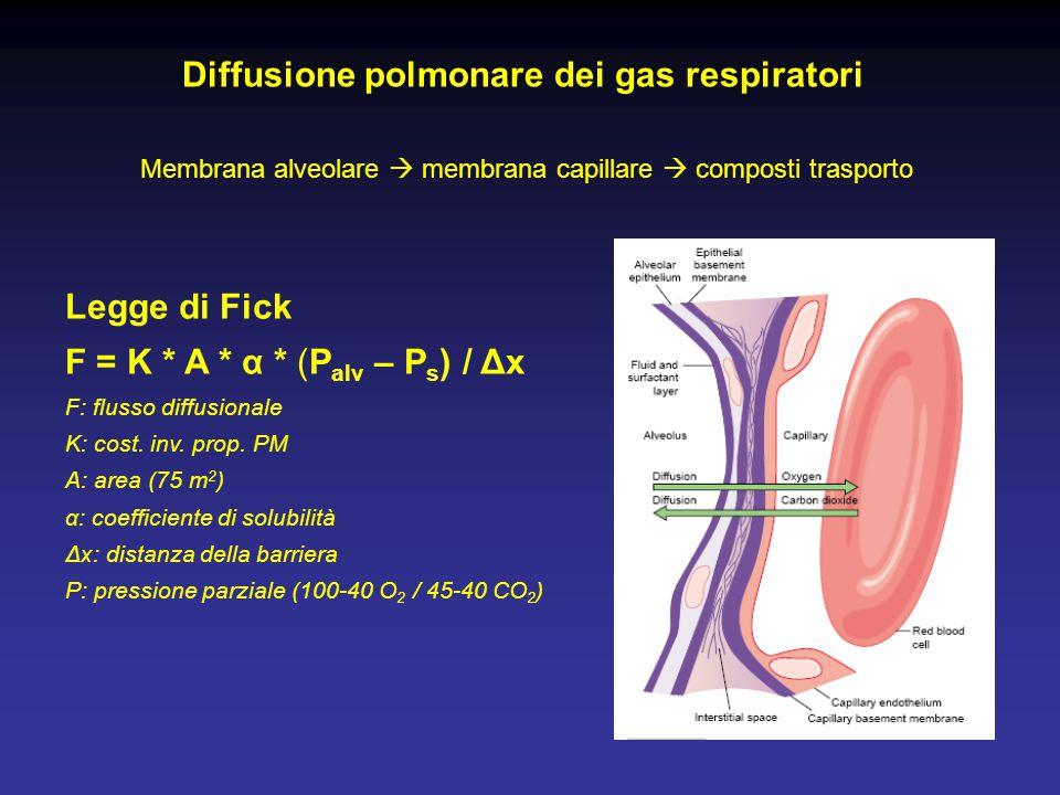 Diffusione polmonare dei gas respiratori Membrana alveolare  membrana capillare  composti trasporto Legge di Fick F = K * A * α * (P alv – P s ) / Δ