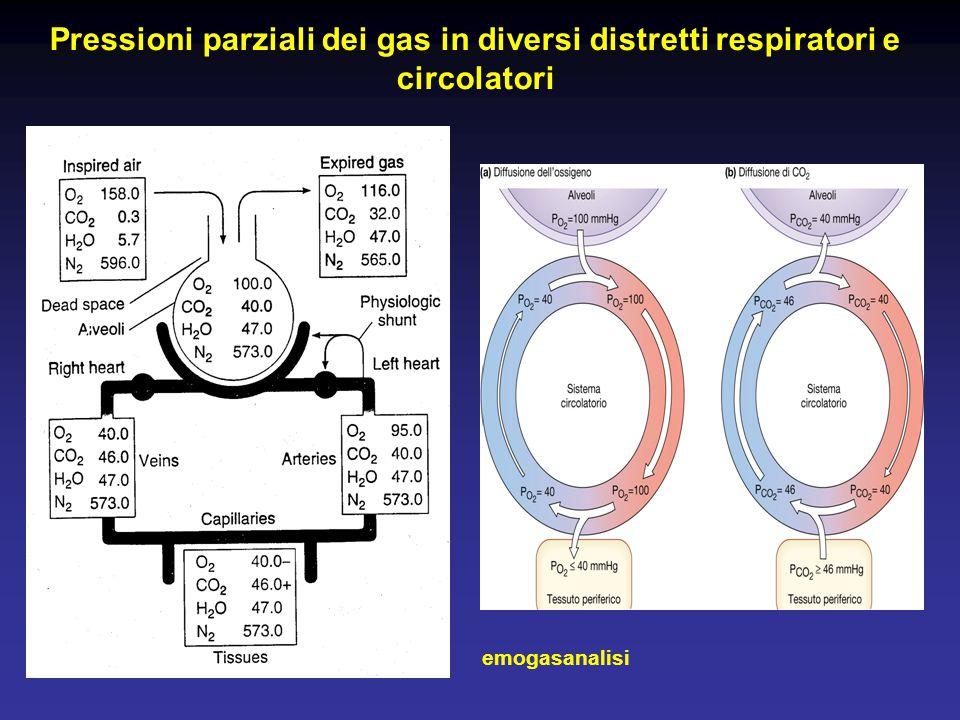 Pressioni parziali dei gas in diversi distretti respiratori e circolatori emogasanalisi