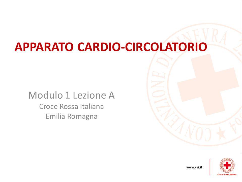 Modulo 1 Lezione A Croce Rossa Italiana Emilia Romagna APPARATO CARDIO-CIRCOLATORIO