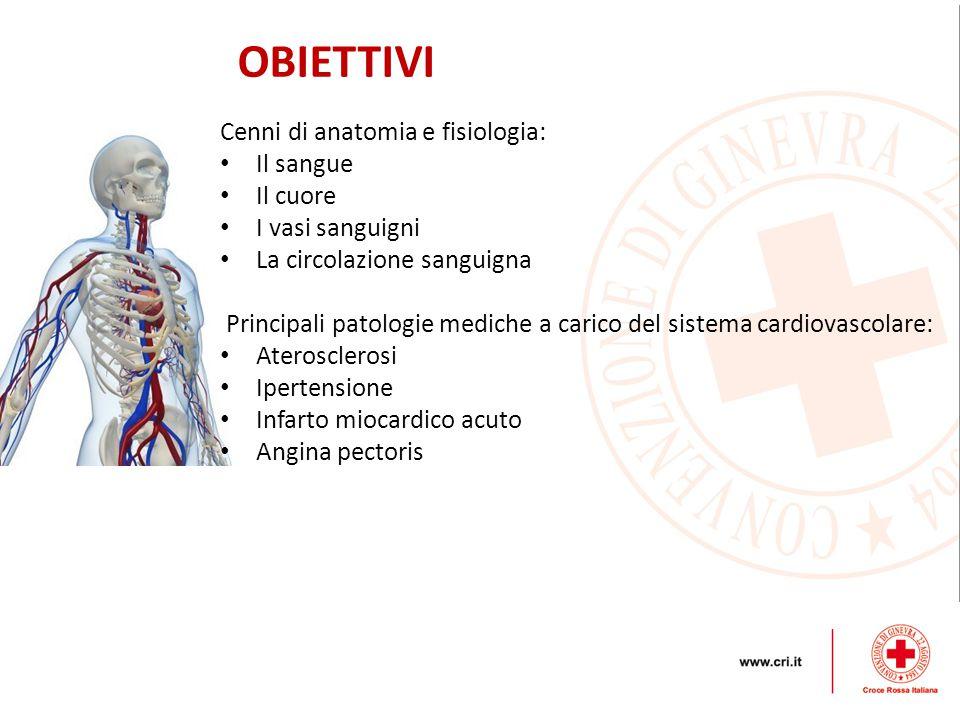 OBIETTIVI Cenni di anatomia e fisiologia: Il sangue Il cuore I vasi sanguigni La circolazione sanguigna Principali patologie mediche a carico del sistema cardiovascolare: Aterosclerosi Ipertensione Infarto miocardico acuto Angina pectoris