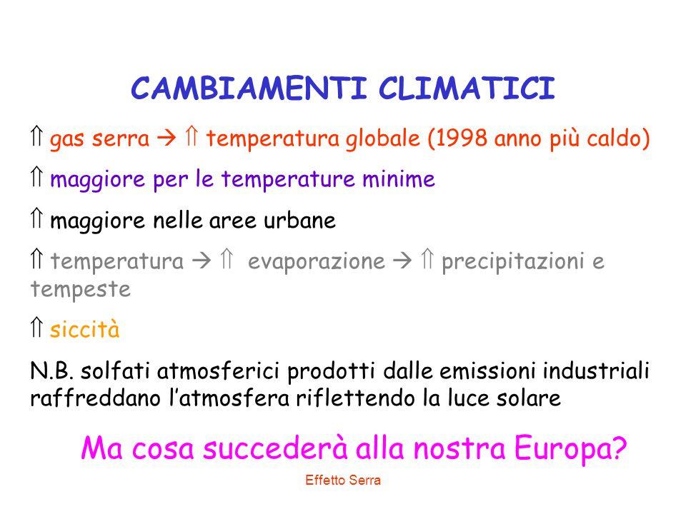 Effetto Serra CAMBIAMENTI CLIMATICI  gas serra   temperatura globale (1998 anno più caldo)  maggiore per le temperature minime  maggiore nelle ar