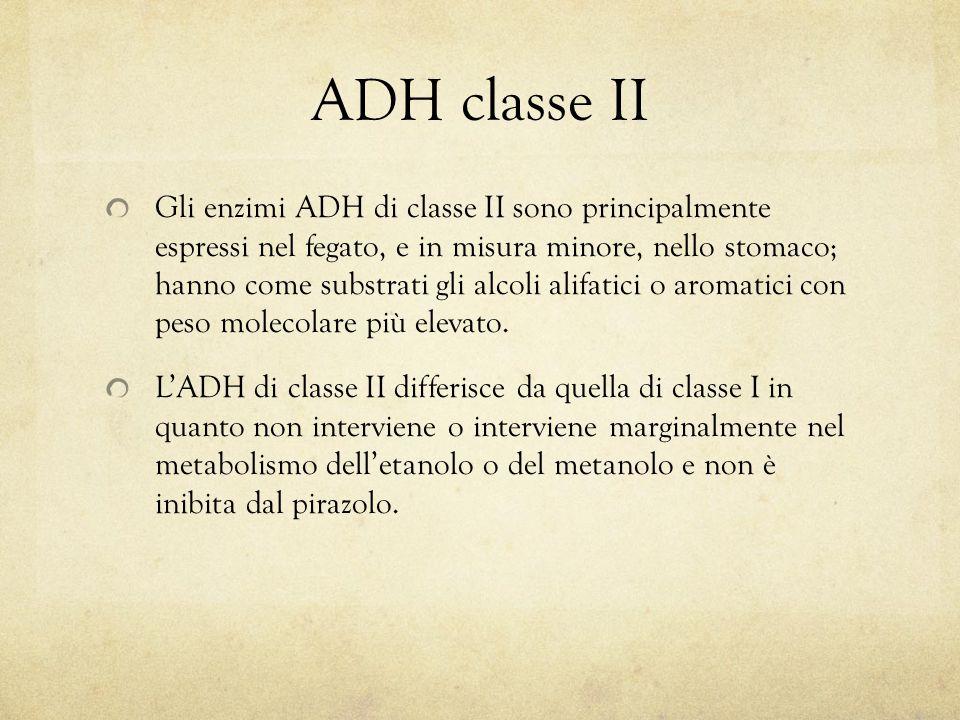 ADH classe II Gli enzimi ADH di classe II sono principalmente espressi nel fegato, e in misura minore, nello stomaco; hanno come substrati gli alcoli alifatici o aromatici con peso molecolare più elevato.