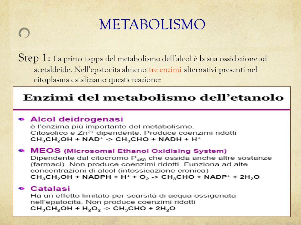 Step 1: La prima tappa del metabolismo dell ' alcol è la sua ossidazione ad acetaldeide. Nell ' epatocita almeno tre enzimi alternativi presenti nel c