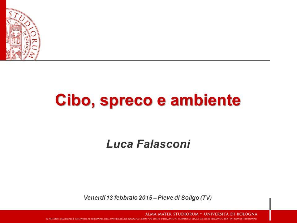Cibo, spreco e ambiente Luca Falasconi Venerdì 13 febbraio 2015 – Pieve di Soligo (TV)