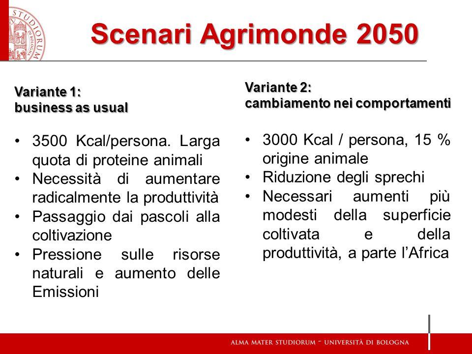 Scenari Agrimonde 2050 Variante 1: business as usual 3500 Kcal/persona. Larga quota di proteine animali Necessità di aumentare radicalmente la produtt
