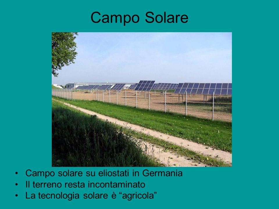 Campo Solare Campo solare su eliostati in Germania Il terreno resta incontaminato La tecnologia solare è agricola