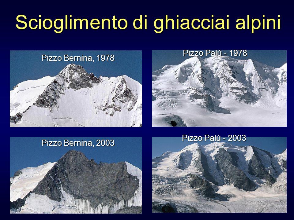 Scioglimento di ghiacciai alpini Pizzo Bernina, 1978 Pizzo Bernina, 2003 Pizzo Palú - 1978 Pizzo Palú - 2003