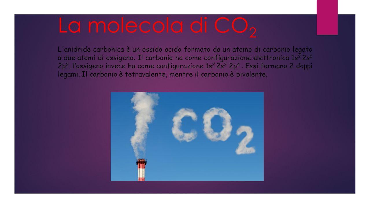 La molecola di CO 2 L anidride carbonica è un ossido acido formato da un atomo di carbonio legato a due atomi di ossigeno.