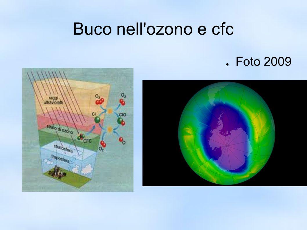 Buco nell'ozono e cfc ● Foto 2009