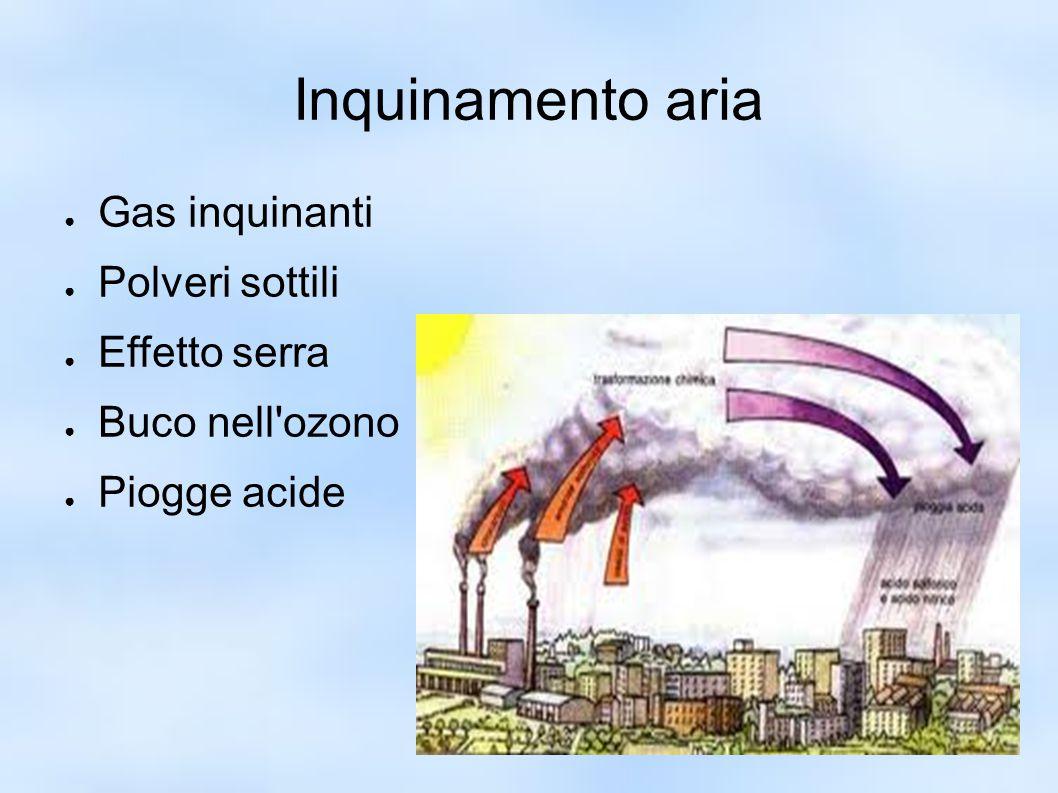 Inquinamento aria ● Gas inquinanti ● Polveri sottili ● Effetto serra ● Buco nell'ozono ● Piogge acide