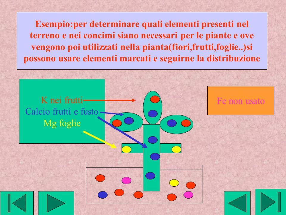 Esempio:per determinare quali elementi presenti nel terreno e nei concimi siano necessari per le piante e ove vengono poi utilizzati nella pianta(fior