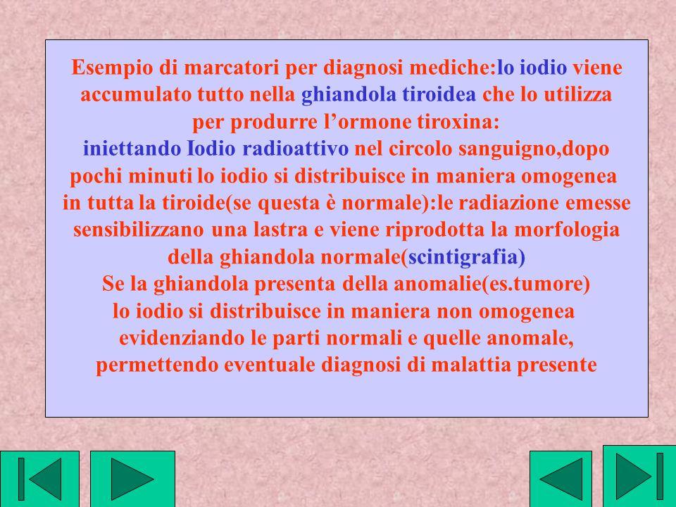 Esempio di marcatori per diagnosi mediche:lo iodio viene accumulato tutto nella ghiandola tiroidea che lo utilizza per produrre l'ormone tiroxina: ini