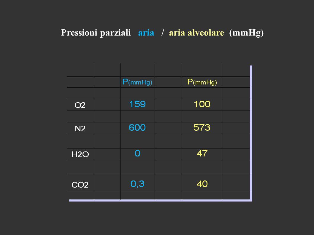 Pressioni parziali aria / aria alveolare (mmHg)