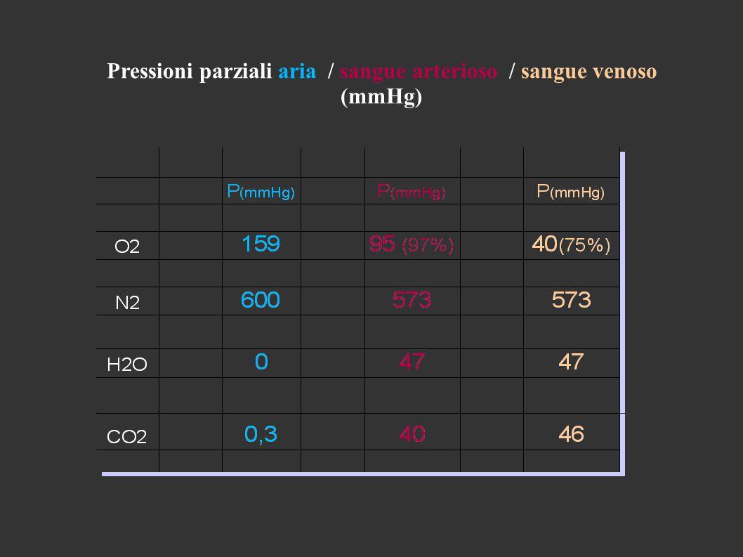 Pressioni parziali aria / sangue arterioso / sangue venoso (mmHg)