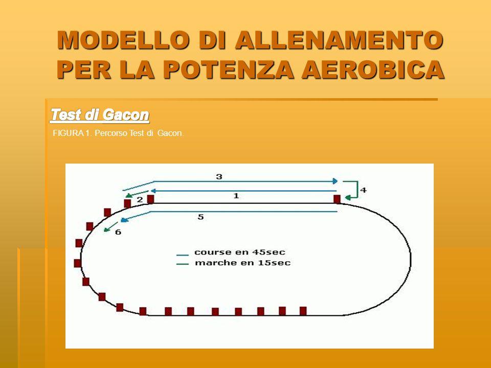 MODELLO DI ALLENAMENTO PER LA POTENZA AEROBICA FIGURA 1. Percorso Test di Gacon.