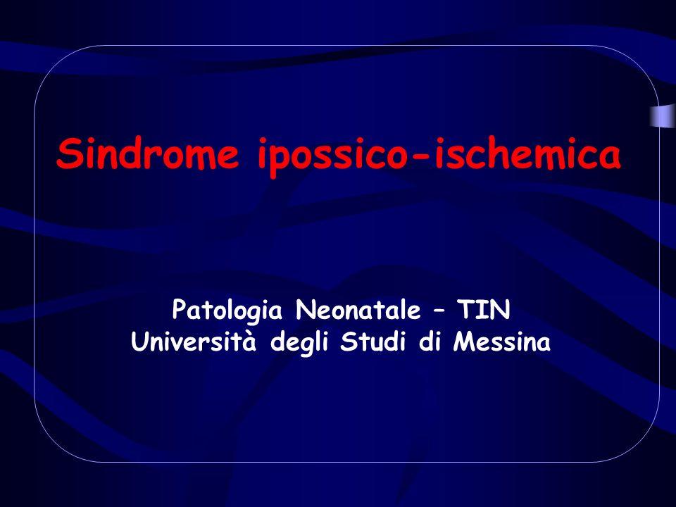 Sindrome ipossico-ischemica Patologia Neonatale – TIN Università degli Studi di Messina