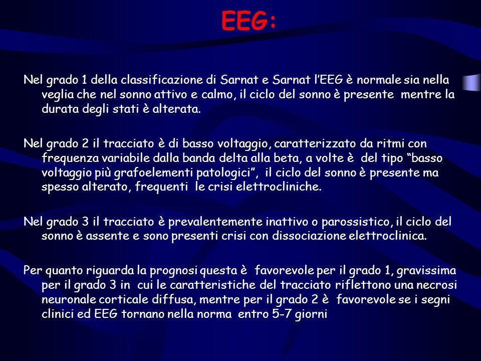 EEG: Nel grado 1 della classificazione di Sarnat e Sarnat l'EEG è normale sia nella veglia che nel sonno attivo e calmo, il ciclo del sonno è presente