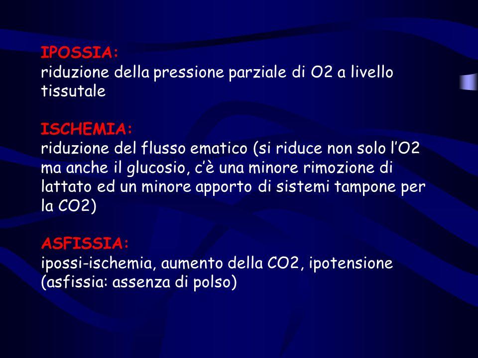 IPOSSIA: riduzione della pressione parziale di O2 a livello tissutale ISCHEMIA: riduzione del flusso ematico (si riduce non solo l'O2 ma anche il gluc