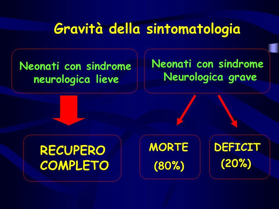 Gravità della sintomatologia Neonati con sindrome neurologica lieve RECUPERO COMPLETO Neonati con sindrome Neurologica grave MORTE (80%) DEFICIT (20%)