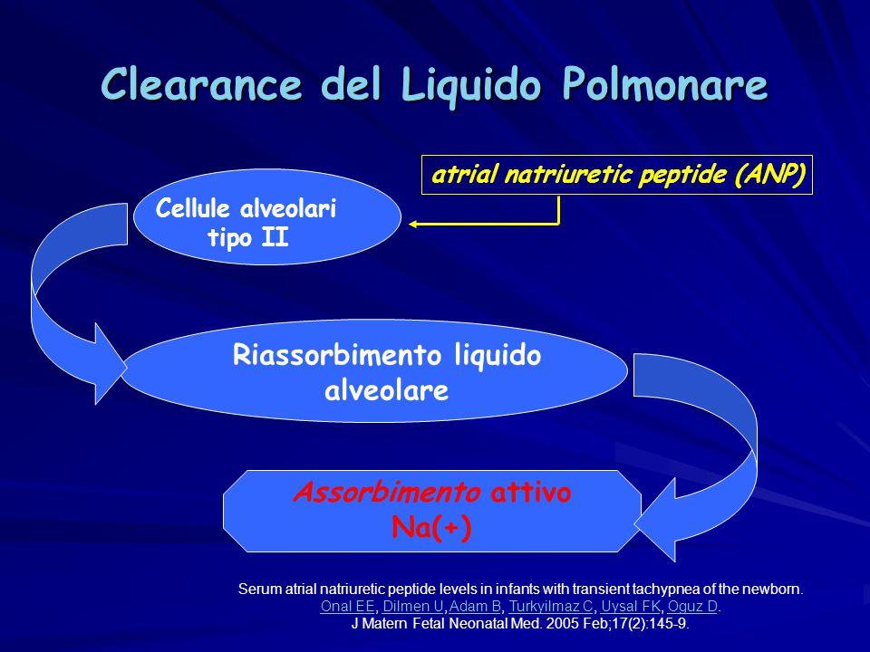 Clearance del Liquido Polmonare Riassorbimento liquido alveolare Assorbimento attivo Na(+) Cellule alveolari tipo II atrial natriuretic peptide (ANP)