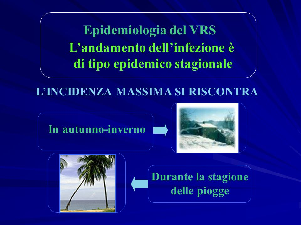Epidemiologia del VRS L'andamento dell'infezione è di tipo epidemico stagionale L'INCIDENZA MASSIMA SI RISCONTRA In autunno-inverno Durante la stagion