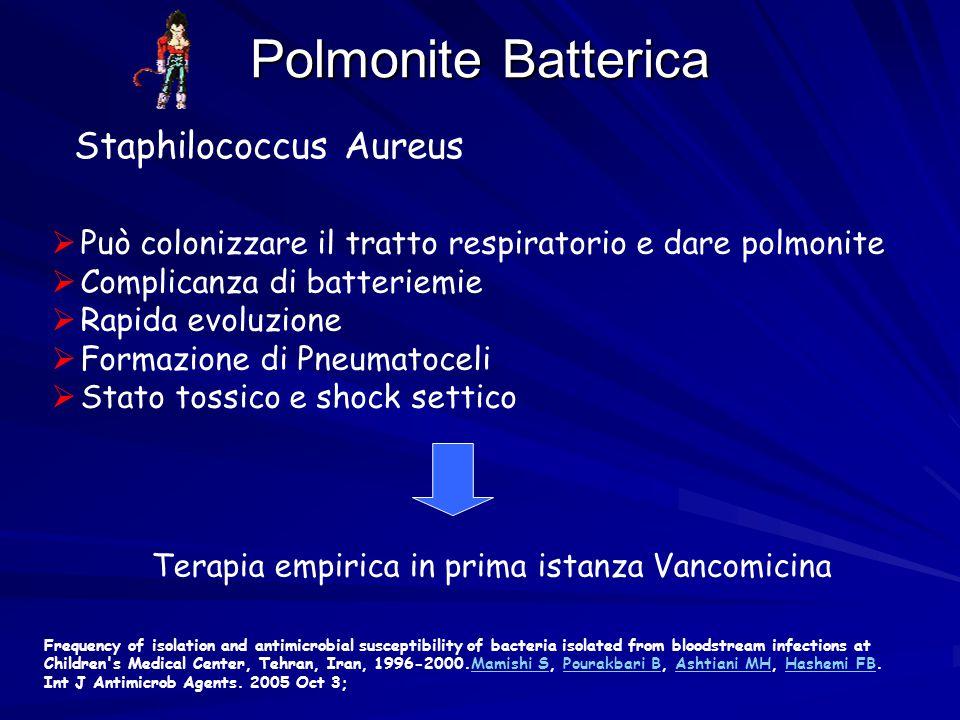 Polmonite Batterica Staphilococcus Aureus  Può colonizzare il tratto respiratorio e dare polmonite  Complicanza di batteriemie  Rapida evoluzione 
