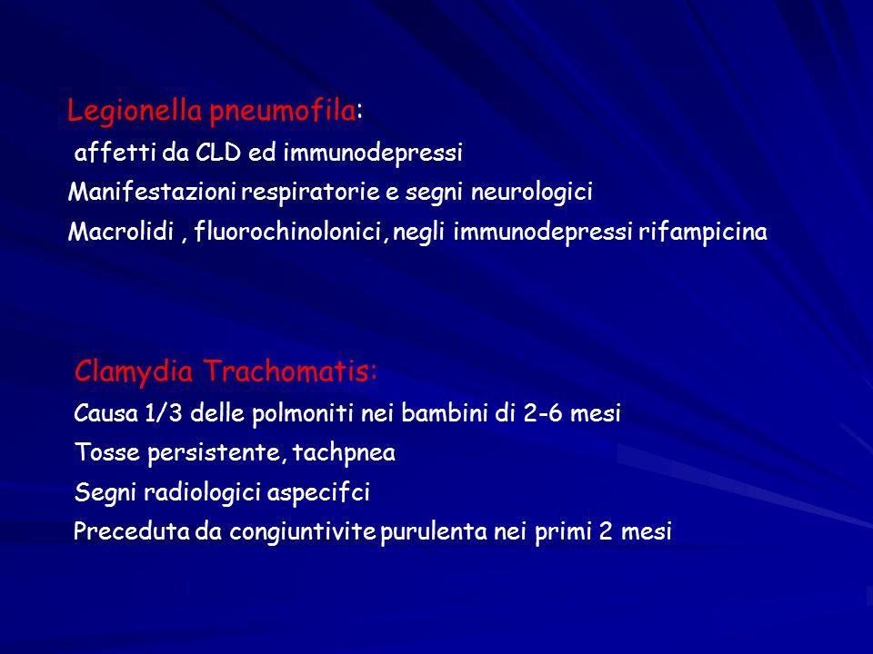 Legionella pneumofila: affetti da CLD ed immunodepressi Manifestazioni respiratorie e segni neurologici Macrolidi, fluorochinolonici, negli immunodepr