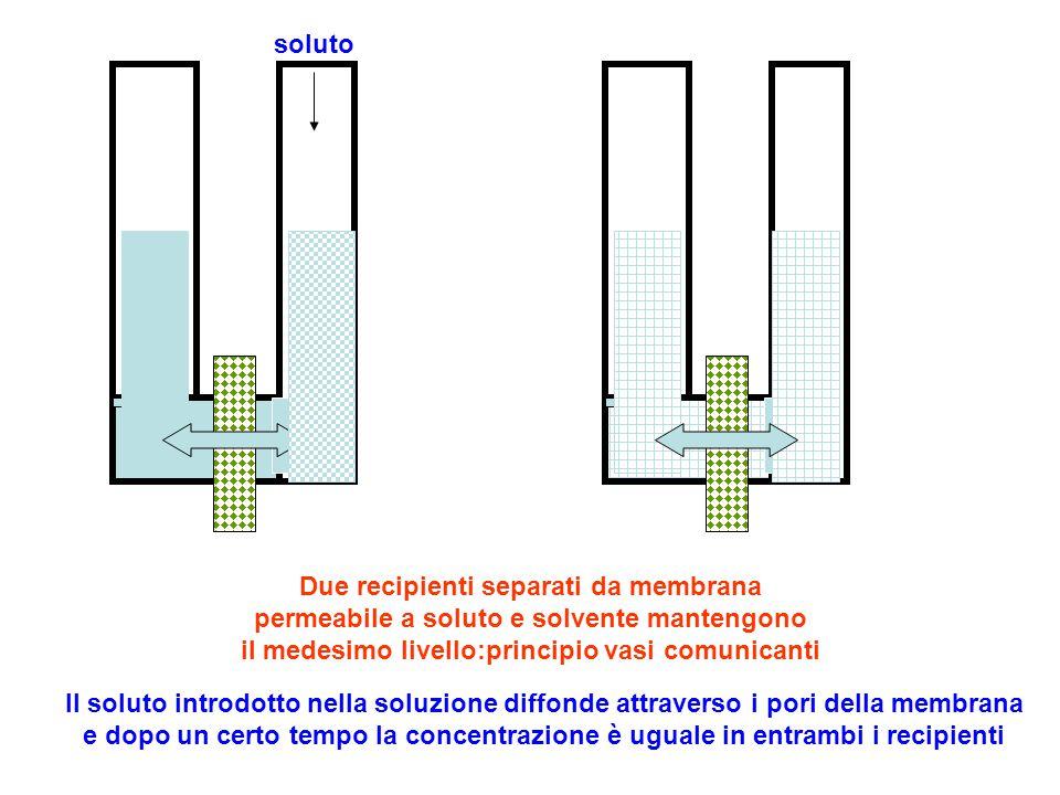 Due recipienti separati da membrana permeabile a soluto e solvente mantengono il medesimo livello:principio vasi comunicanti soluto Il soluto introdot