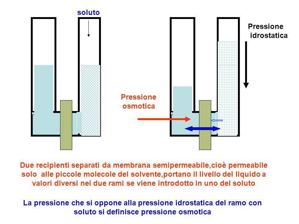 Due recipienti separati da membrana semipermeabile,cioè permeabile solo alle piccole molecole del solvente,portano il livello del liquido a valori div