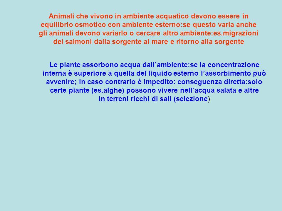 Animali che vivono in ambiente acquatico devono essere in equilibrio osmotico con ambiente esterno:se questo varia anche gli animali devono variarlo o