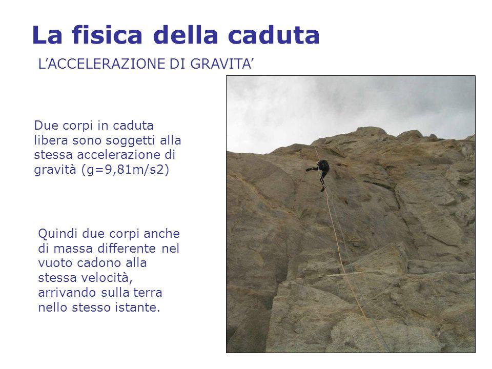 La fisica della caduta L'ENERGIA CINETICA L'energia che un corpo possiede in caduta non dipende solo dalla velocità ma anche dalla massa che esso possiede Quindi la forza necessaria per arrestare un corpo in caduta libera (FORZA DI ARRESTO) dipende soprattutto dalla massa a pari velocità.